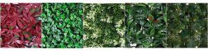 setos artificiales y jardineria vertical